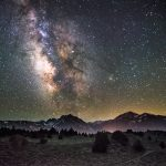 Timelapse Of The Milky Way In A Pine Forest